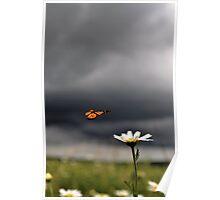 Stormy Landing Poster