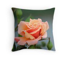 Springtime Peach Throw Pillow