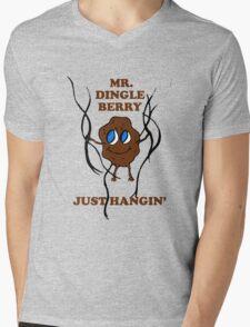 Mr. Dingleberry Mens V-Neck T-Shirt