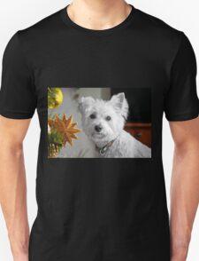 Christmas Star Puppy T-Shirt