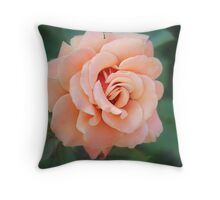 Softly at Dusk Throw Pillow