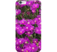 Purple Sping Flowers iPhone Case/Skin