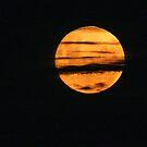 Moon Splendor by Laurel Talabere