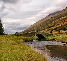 Butterbridge Glen Kinglas Scotland  by M.S. Photography/Art