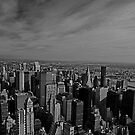 View from the Empire State Building, Manhattan by JMChown