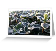 Cold, Icy Cleveleys Morning Greeting Card