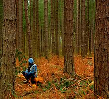 Alone in the woods by rolandkeates