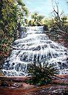 Katoomba Falls, Blue Mountains Australia by © Linda Callaghan