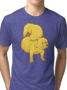 Boys Best Friend Tri-blend T-Shirt