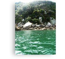Abel Tasman Coast Canvas Print