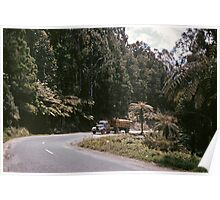 Timber truck on Black Spur  19571005 0004  Poster