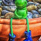 Contented Frog by Simon Duckworth