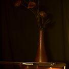 Evening strings by Jan Clarke