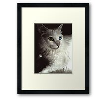Her eyes could tell a story Framed Print