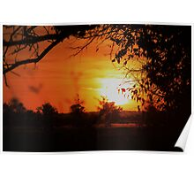 Kansas Orange Sunset with Trees Silhouette Poster