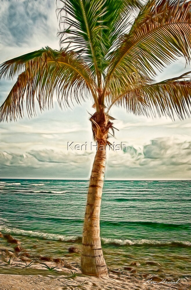 Palm by Keri Harrish