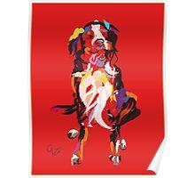 Dog Iggy Poster