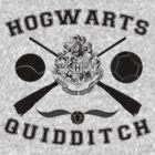 Hogwarts Quidditch (Black) by Lumos ϟ Nox