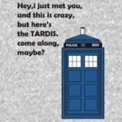 Tardis,Come along maybe? by jem16