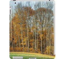 Autumn. iPad Case/Skin