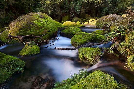 Omanawa river run moss rocks by Ken Wright