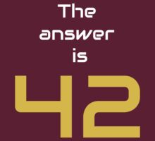 The Answer is 42 by Artmassage