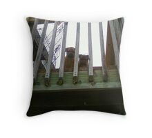 Who Goes There? Throw Pillow
