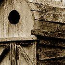 The Tree House by Jaysen Edgin