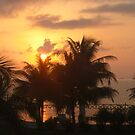 SunRise on the Palms by HowardWalsh