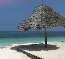 Beaches of Zanzibar by HowardWalsh
