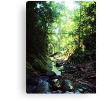 Tranquil Green Canvas Print