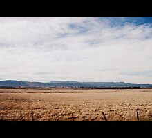 A Land of Sweeping Plains by dher5