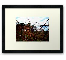 I'll have a wine with that. Framed Print