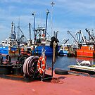 New Bedford water front! by Nancy Richard