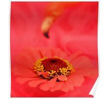 Mutual Admiration Society - Daily Homework - Day 24 - May 31, 2012 Poster