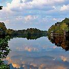 Fall Reflections Along The Inter-Coastal Water Way by Kathy Baccari