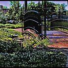 Garden Bridge by Sandra Lee Woods