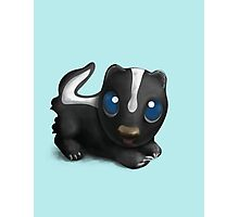 Little Skunk. Photographic Print