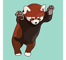 Red Panda Excited Photographic Print