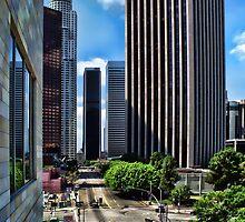 Downtown LA by CarolM