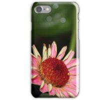 Fallen Zinnia iPhone Case/Skin