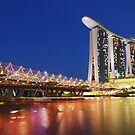 Double Helix Bridge by adng
