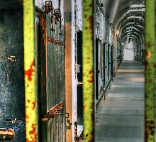 Life Through the Bars by Carrie Blackwood
