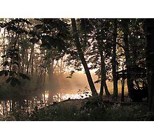 Morning Glade Photographic Print