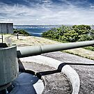 Coastal Defence by Chris Cardwell