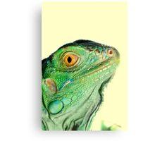 Iguana head Canvas Print