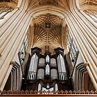 Bath Abbey organ by Peter Ellison
