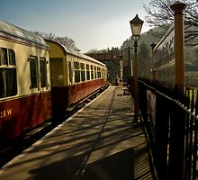 Buckfastleigh Steam Railway by Jay Lethbridge