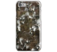 Orton Effect Black-tailed Godwits iPhone Case/Skin