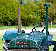 Fordson tractor by Mark Watkin  Price